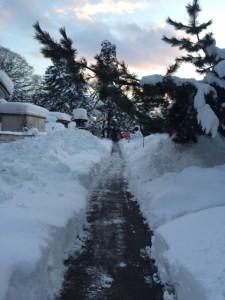 雪片付け後